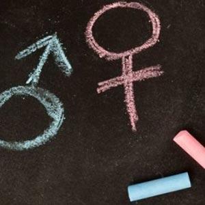 non esiste nessuna teoria gender
