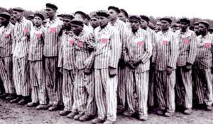 giornata della memoria per i gay e il ricordo dell'omocausto