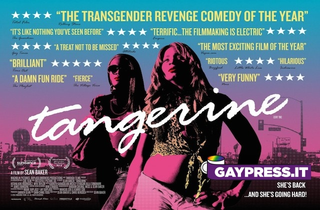 tangerine gaypress